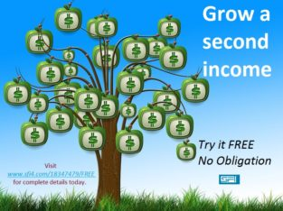 FREE Internet Business Course